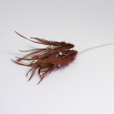 Diamante Feathers - Brown