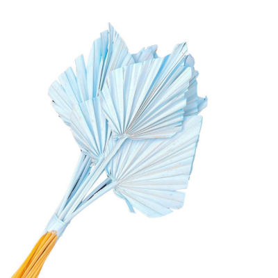 DRIED PALM SPEARS 10 PACK LIGHT BLUE