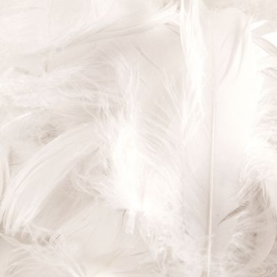 Feather Bag 50g White